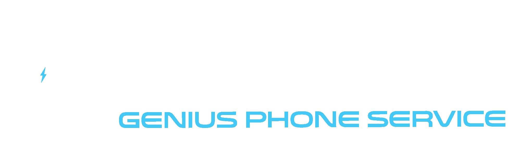 GPS Genius Phone Service